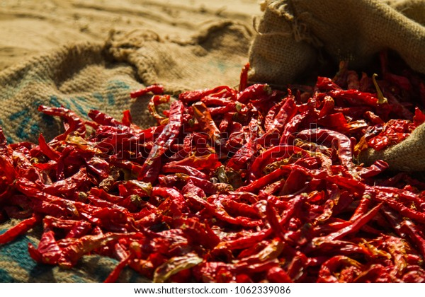 Sun dried chili peppers, India