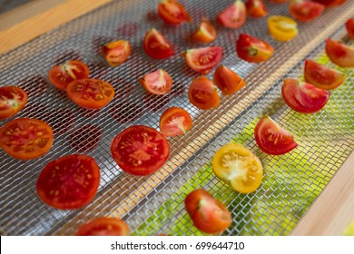 Sun dried tomatoes in solar drying system