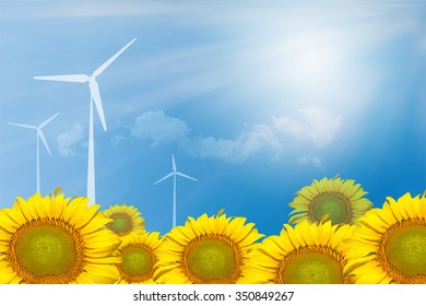 Sun flowers with copy space for frame  on abstract background