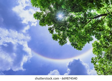 Sun halo with cloud in the blue sky.