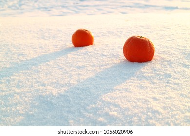 in the sun lie two orange oranges in the snow, cold bright sparkling snow