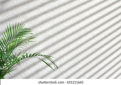 Sun light on wall or blind shadow isolated on white