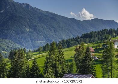 Sun lit green alpine meadows and pine woods around Vigo di Fassa village in Fassa valley, Dolomites, Trentino-Alto Adige region, South Tyrol, Italy