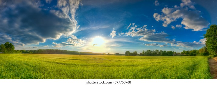 Sun over corn field panorama with clouds in blue sky, picturesque rural landscape