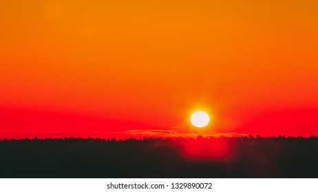 Sun Over Horizon At Sunset Or Sunrise. Natural Background In Warm Orange And Yellow Colors. Dark Forest Ground. Copy Space