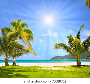 Sun over idyllic dream beach wit palm trees on the grass and white sand