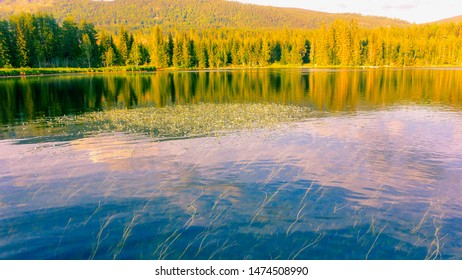 Sun over lake and forest in Norway