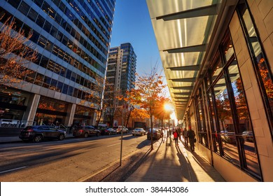 Sun peaking through the trees on the sidewalk, glass windows, people wandering in the downtown core