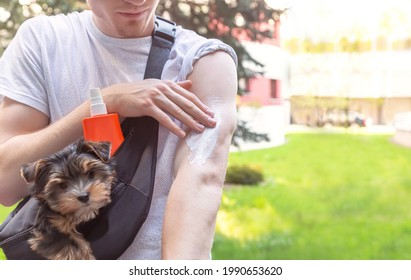 Sun protection. Hand of caucasian man applying sun cream (sunscreen) from a plastic container (bottle) during walking with dog in the city. Summer day. Skin care concept.