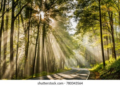 Sun Rays on Newfound Gap Road in Great Smoky Mountains National Park