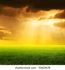 Sun rays over field.