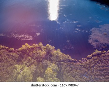 Sun reflection at forest lake aerial shot