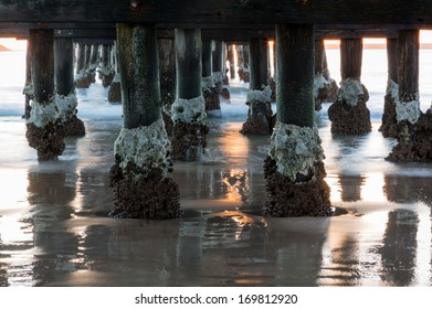 Sun rise illuminates structure of pier at Coffs Harbour in New South Wales Australia