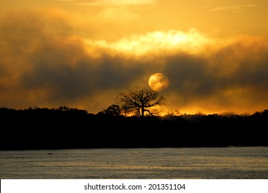 Sun rise over Amazon River near Manaus, Amazonas, Brazil