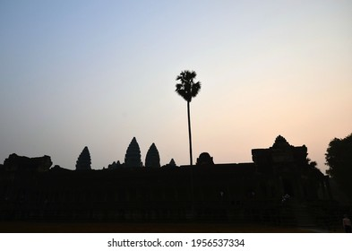 Sun rise over the facade of Angkor Wat featuring a large palm tree and pink tinged blue sky