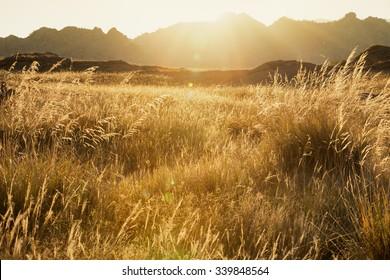 Sun rises from behind mountain range, Altai mountains, Eastern Kazakhstan