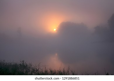 The sun rises early in the morning in the fog