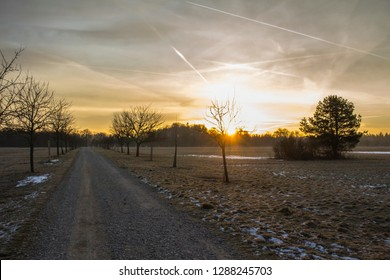 The sun rises over partially snowy fields behind a row of trees and turns the sky orange