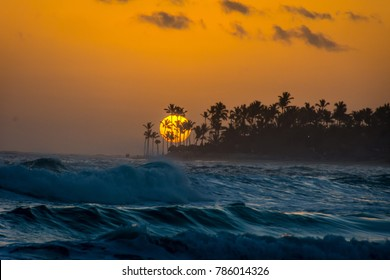 Sun rising above the palm trees on Bavaro beach in Punta Cana, Dominican Republic.