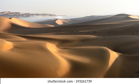 With the sun rising on the sand dunes, it paints them with golden color.