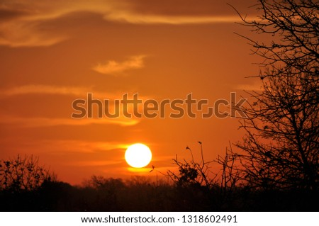 Sun rising over rural landscape, with sky and clouds glowing in deep orange shades