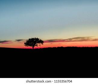 Sun Set Lonliness