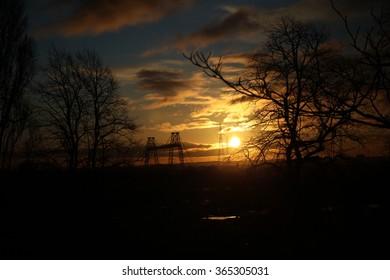 Sun set through trees