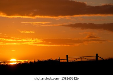 sun sets behind a silhouetted hedge line and farm gate with dramatic orange sky and clouds. Image