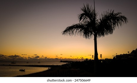 The sun sets behind a tree in Playa Blanca, on the island of Lanzarote by the coast.