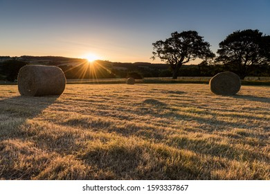 Sun setting behind hills and open fields with long shadows across recently harvested cereal with rolled bales of straw and trees in middle distance.