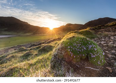 Sun setting behind mountains lighting up some fields and meadows in early summer in the arctic