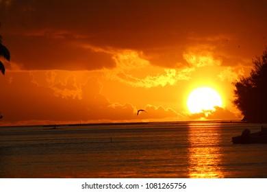Sun Setting in Moorea