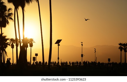 The Sun Setting on Venice Beach in Los Angeles, California