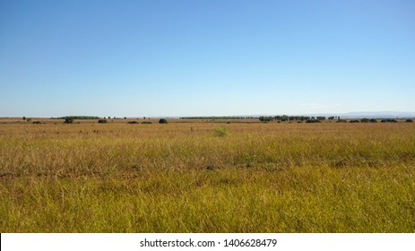 Sun shines on flat grassland savanna landscape in Andranovory region of Madagascar - only grass bushes and small trees growing in distance