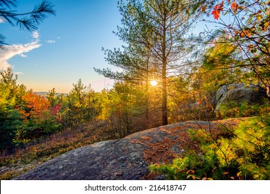 The sun shines through trees in a rocky forest landscape during the autumn season.