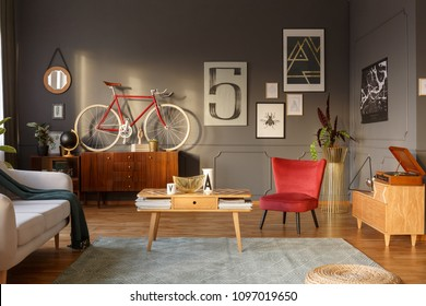 Sun shining into a unique, comfortable living room interior with couch, table, red armchair, green carpet, bicycle, gramophone and intriguing posters on gray wall with molding