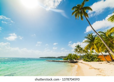 Sun shining over La Caravelle beach in Guadeloupe, French west indies. Lesser Antilles, Caribbean sea