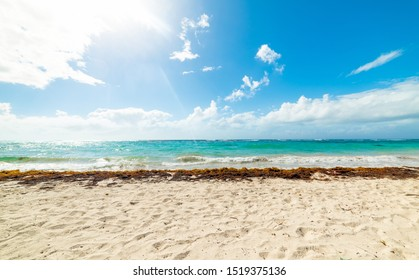 Sun shining over Raisins Clairs beach in Guadeloupe, French west indies. Lesser Antilles, Caribbean sea