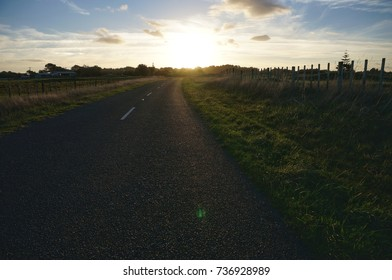 sun shining road with grass
