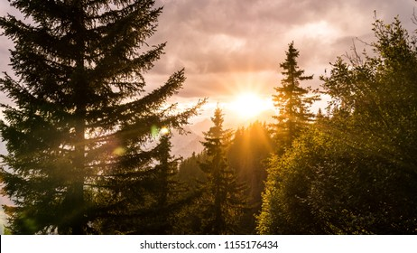 Sun shining through the clouds and trees in the mountains