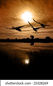 Sun, sky, and extreme silhouetted Canadian Geese over wildlife lake, reeds in foreground, sepia toned, San Joaquin Delta