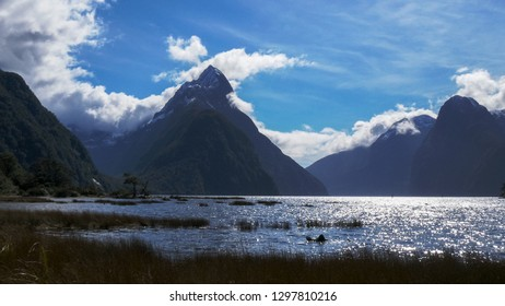 the sun sparkles on the waters of milford sound with mitre peak in the background