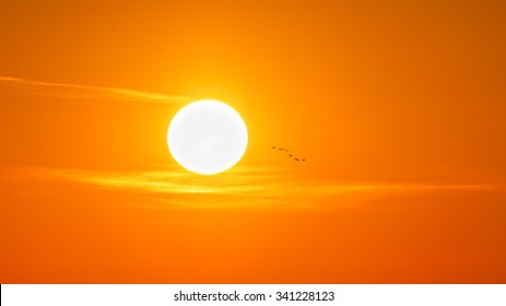 Sun at sunrise with a small flock of wild geese