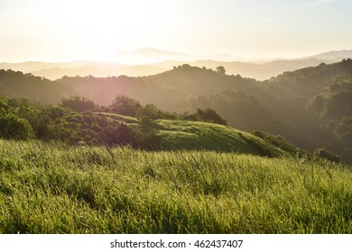 Sun warming dewy mountains in Berkeley California.