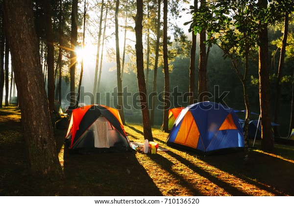 Sunbeam in the morning around camping site