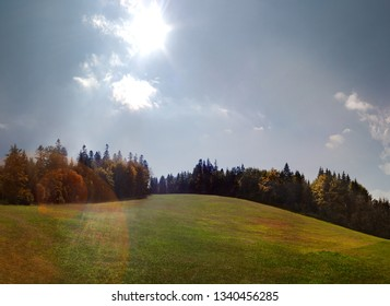 Sunbeam over a green meadow and fir trees in autumn panorama.