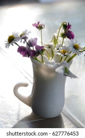 Sunbeams penetrate through violets and daisies in a vase