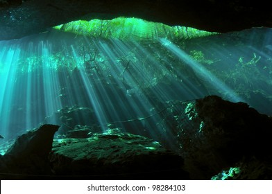 Sunbeams penetrating through the waters of the underwater cave with sunken trees in the background, Yucatan peninsular, Mexico