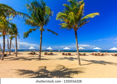 Sunbeds and palm trees on the beach, Sanur, Bali, Indonesia