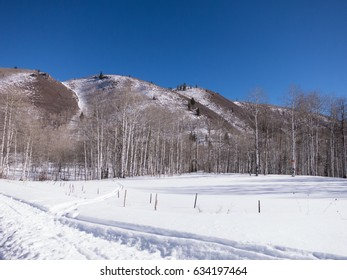 Sundance Mountain, Wasatch Mountain range, covered in fresh snow with cross country skiing and snowmobile tracks along the fence line.  Blue, cloudless winter day.  Sundance, Utah.
